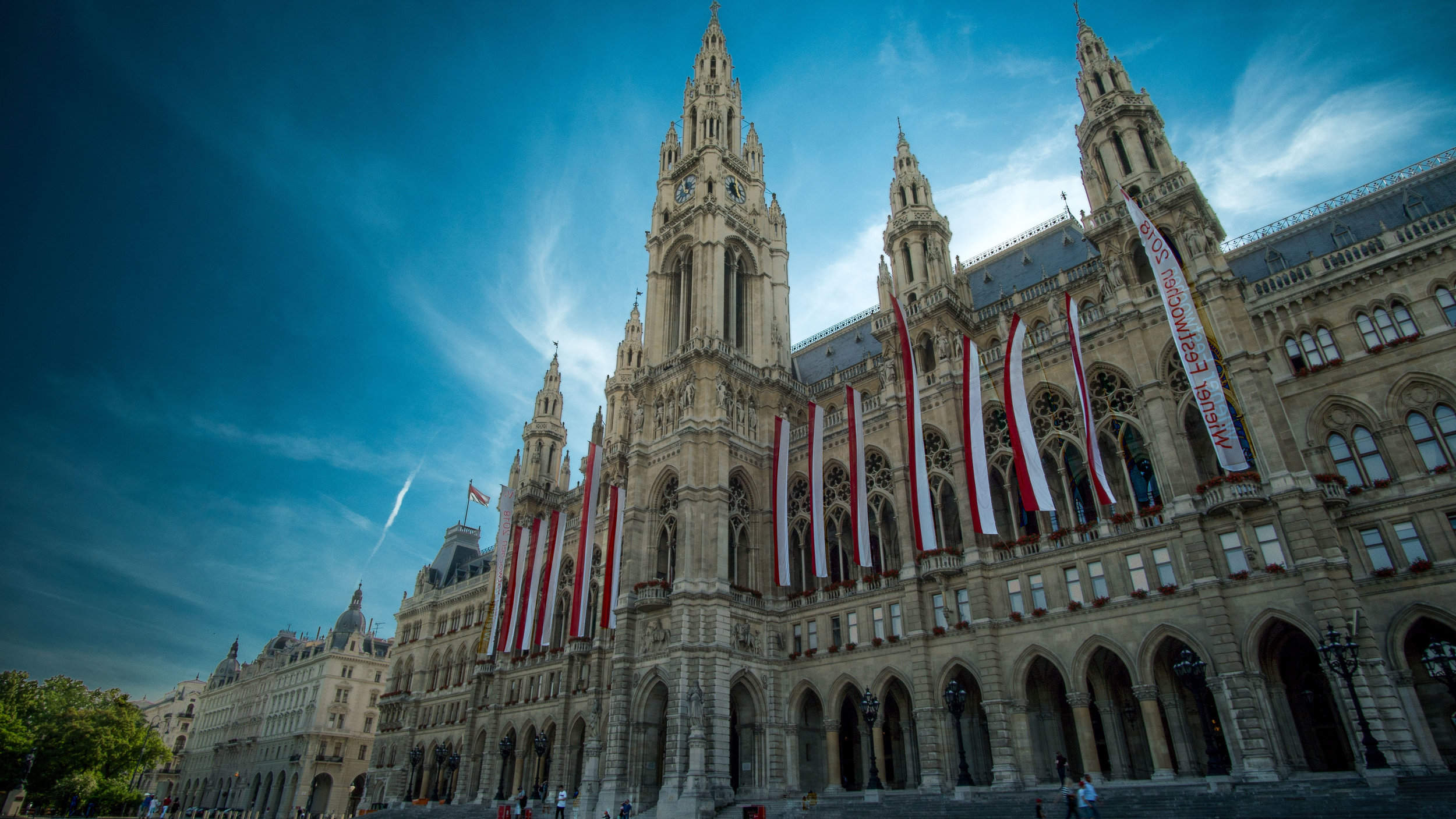 Vienna's neat-4.jpg