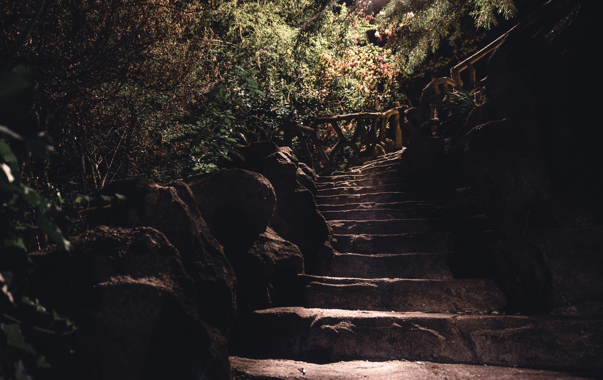 Stairs in the Park.jpg