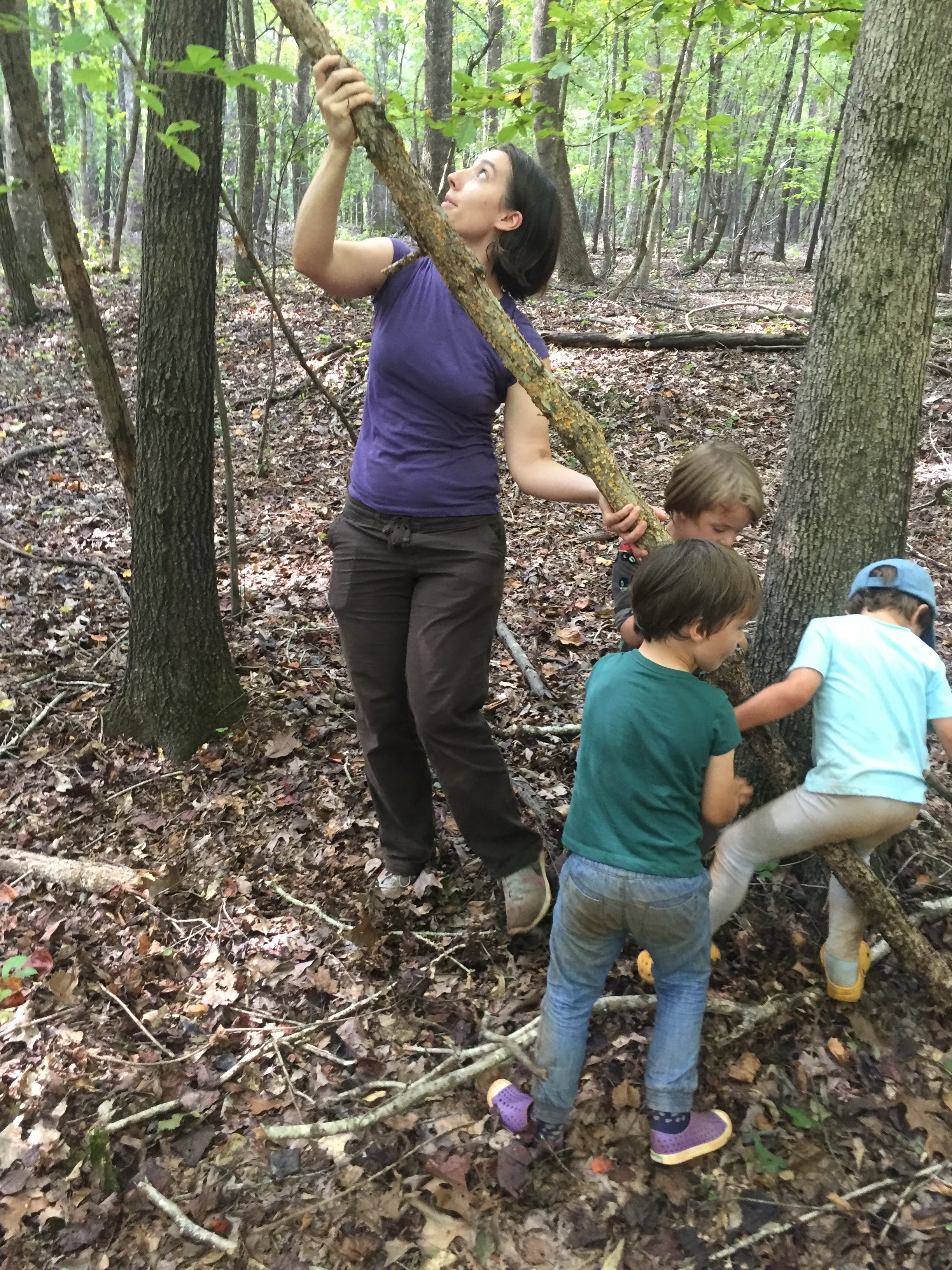 Some of the older children were excited to help Amy lower a small dead tree in the new site we explored.
