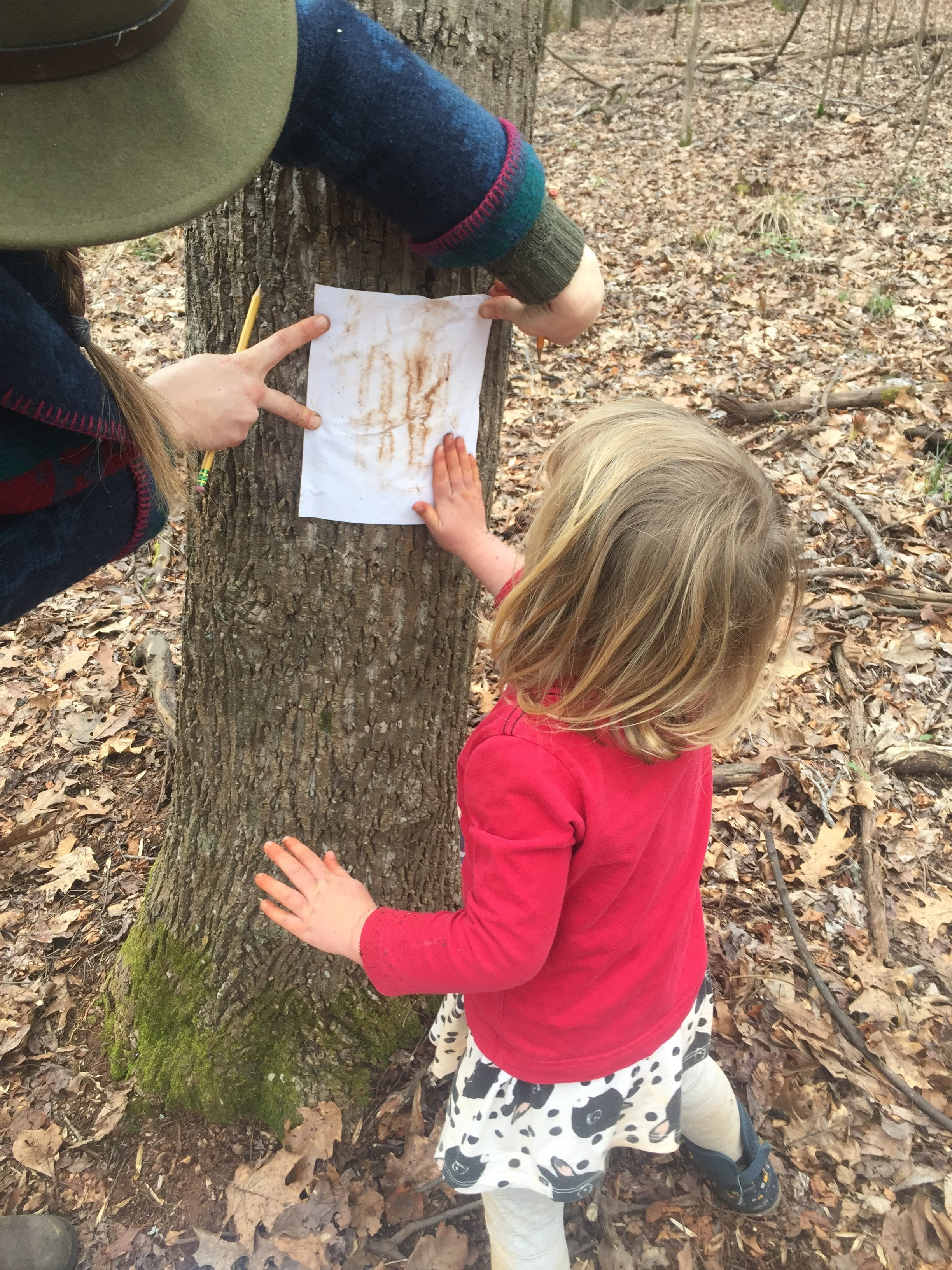 Larkin and Kylie made some bark rubbings with dirt.
