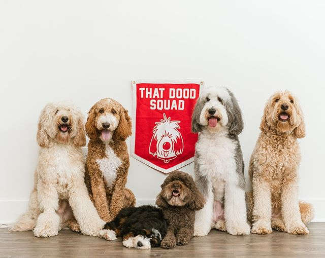 Let your Dood Squad flag fly high and proud 🙌 #thatdoodsquad Pennant:: @oxfordpennant 📷: @shelbyraephotographs