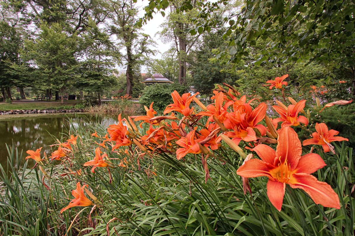 Stroll the Gardens