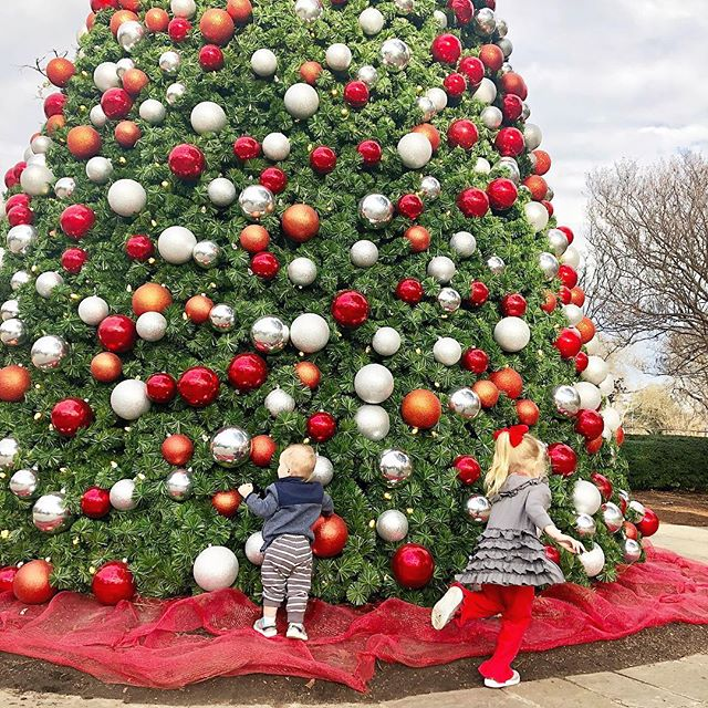 Any afternoon spent @thedallasarboretum is a special afternoon. I love making memories each season at this special place! We enjoyed seeing the 12 days of Christmas displays today!