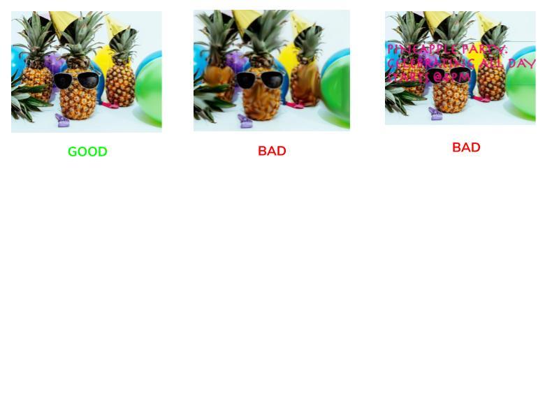 Image Guidelines.jpg