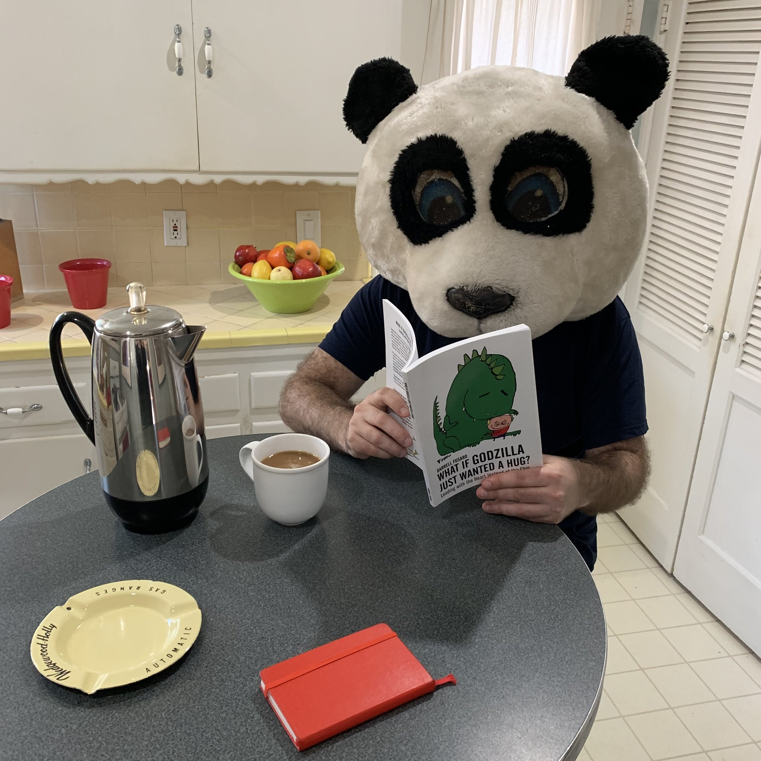 Panda Kitchen Solo.jpg