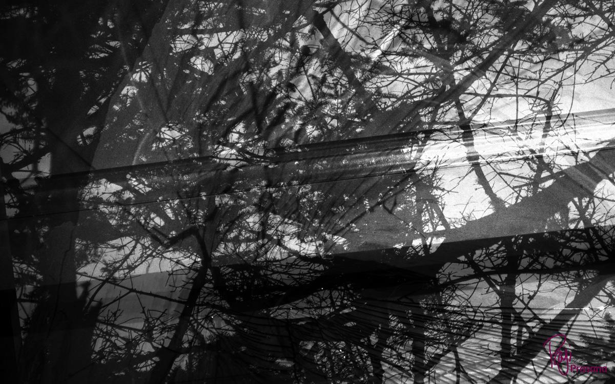 darkness_8A.jpg