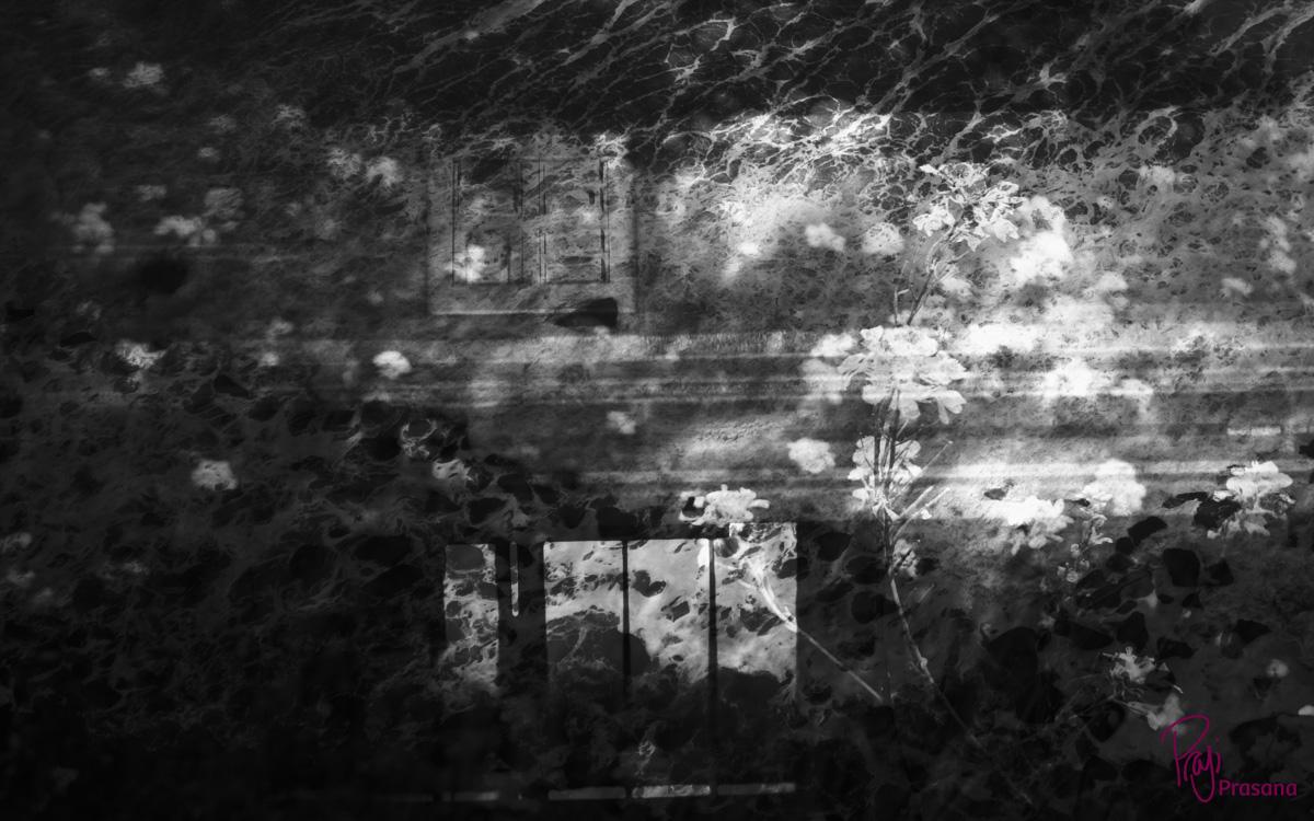 darkness_10A.jpg