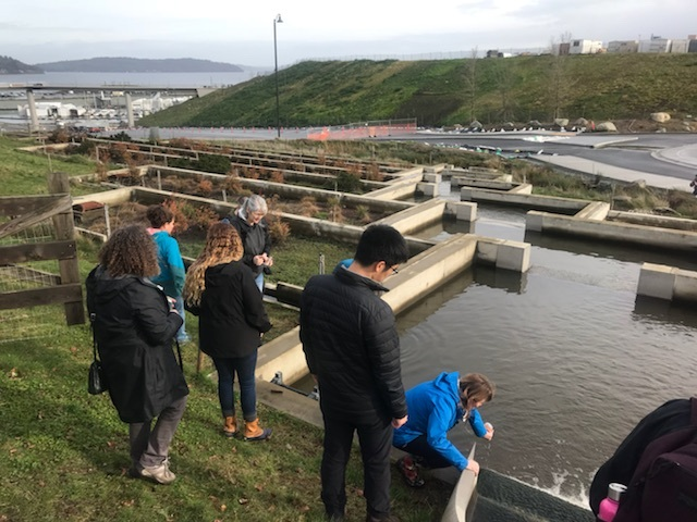 SeaDoc Educator Workshop participants sampling inlet to Metro Parks Tacoma stormwater filtration system to test water quality before and after filtration. Photo by Jess Newley.