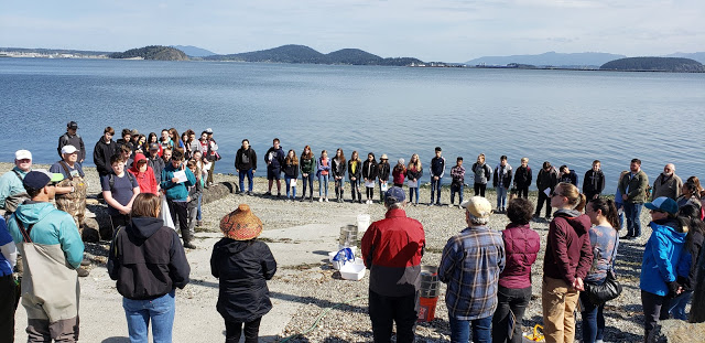 Conway Middle School students, scientists, and volunteers gather for a welcome by Samish elder, Rosie Cayou James before their beach restoration research.