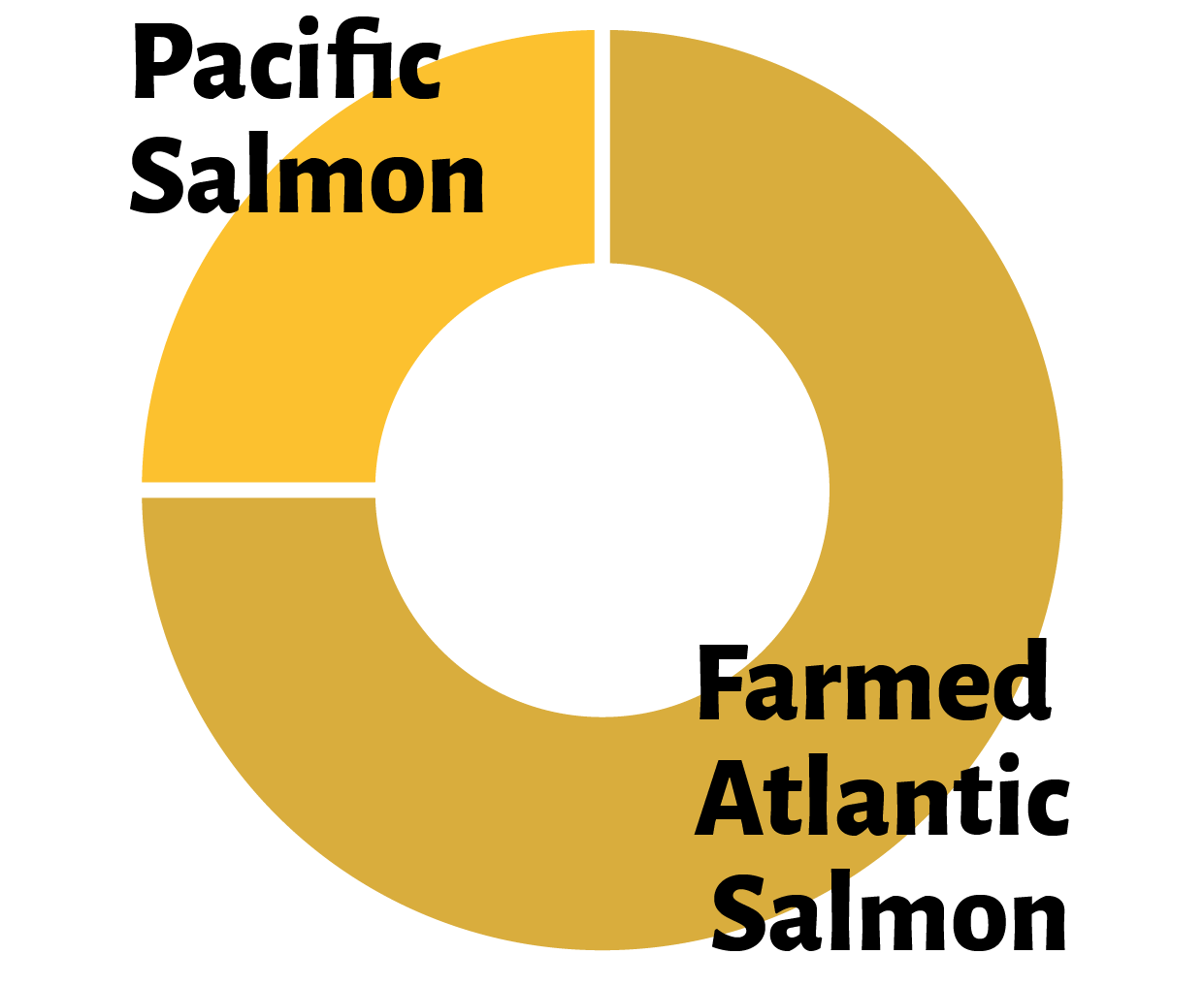 Farmed Atlantic salmon now makes up approximately 75% of BC's salmonhaul and is BC's top seafood export.   (source)