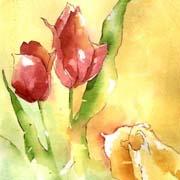 spring tulip 3.jpg