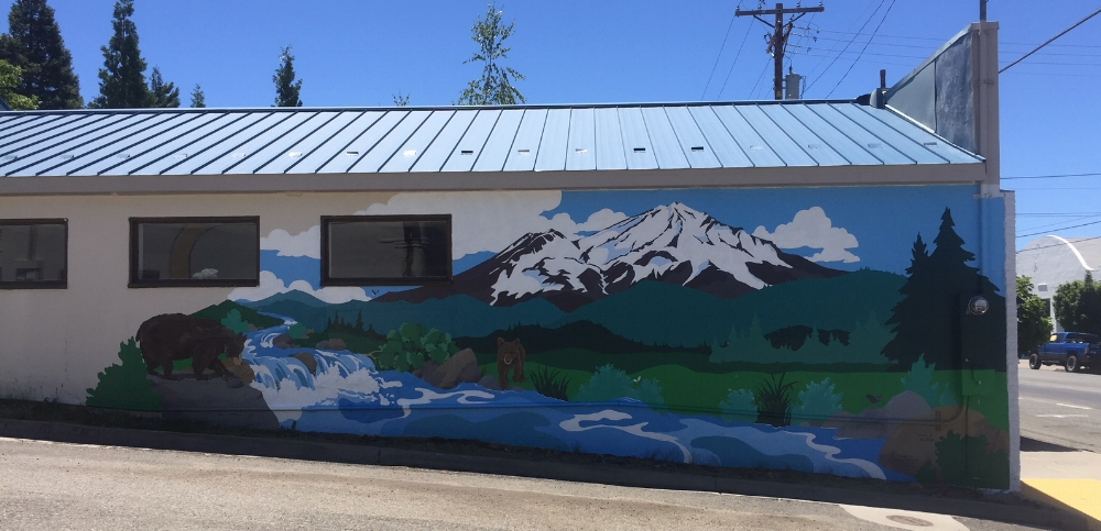 June 23, 2018 Finished Mural, by Kim Solga