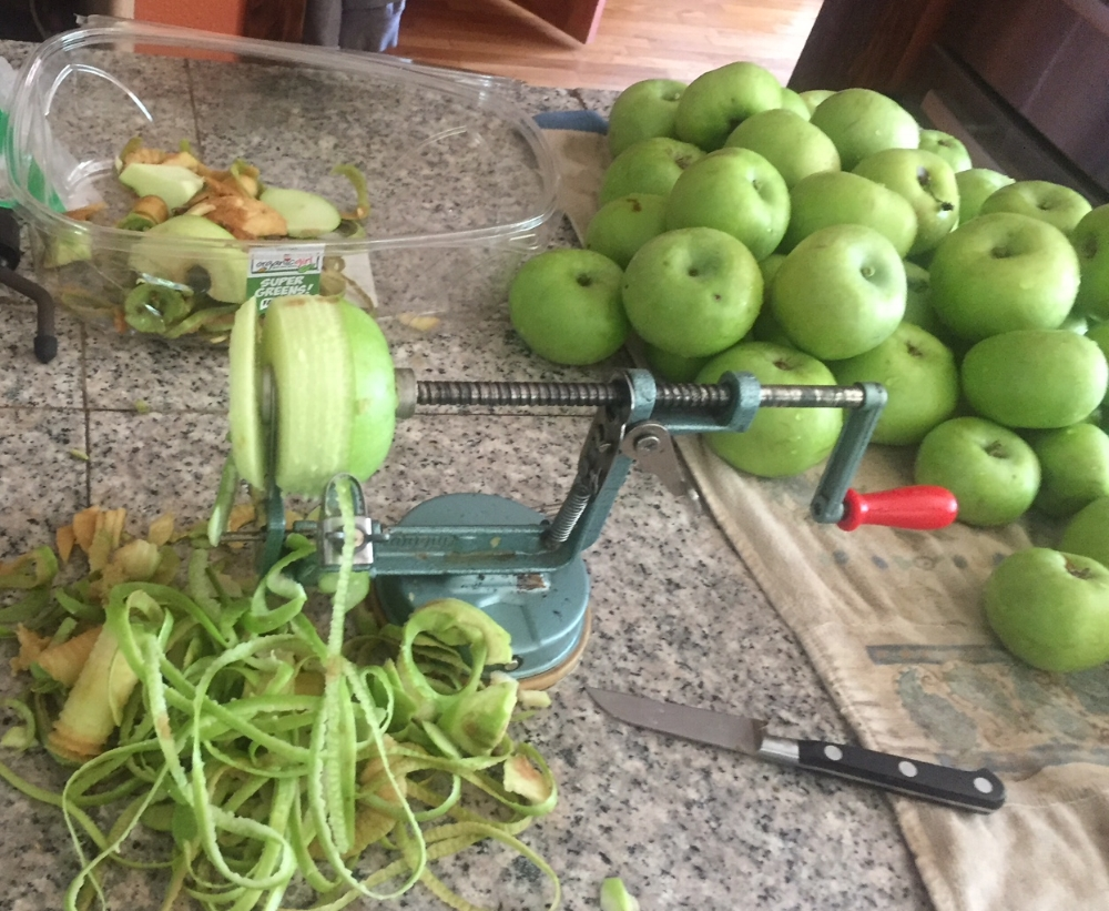Davie borrowed Cindy's Apple peeler, corer and slicer. It sure makes the work easy!