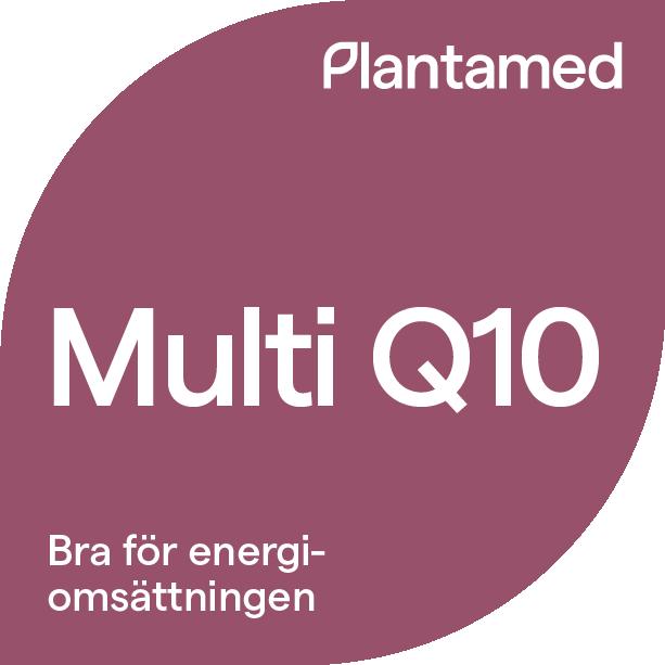 MultiQ10@4x.png