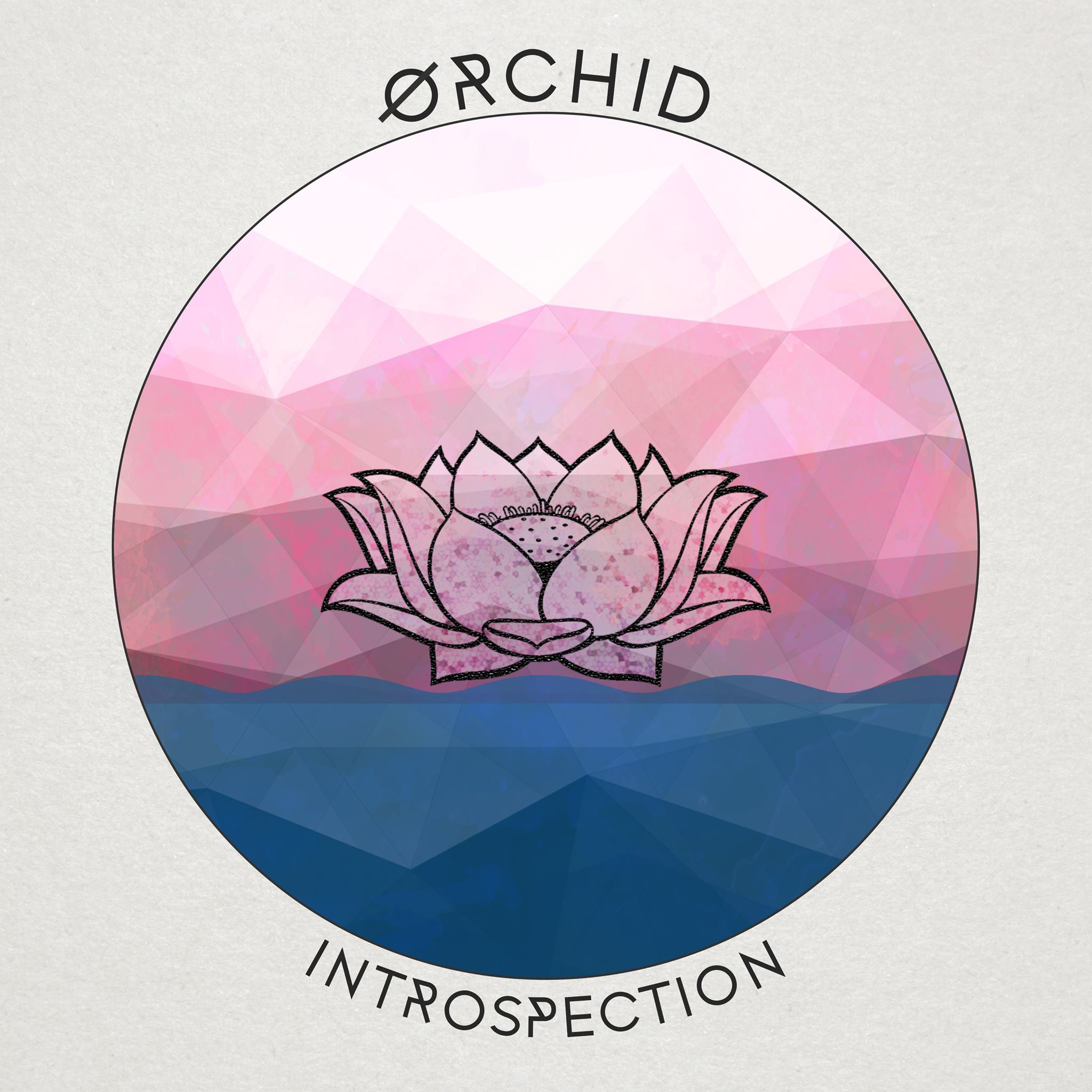 Introspection (ØRCHID)