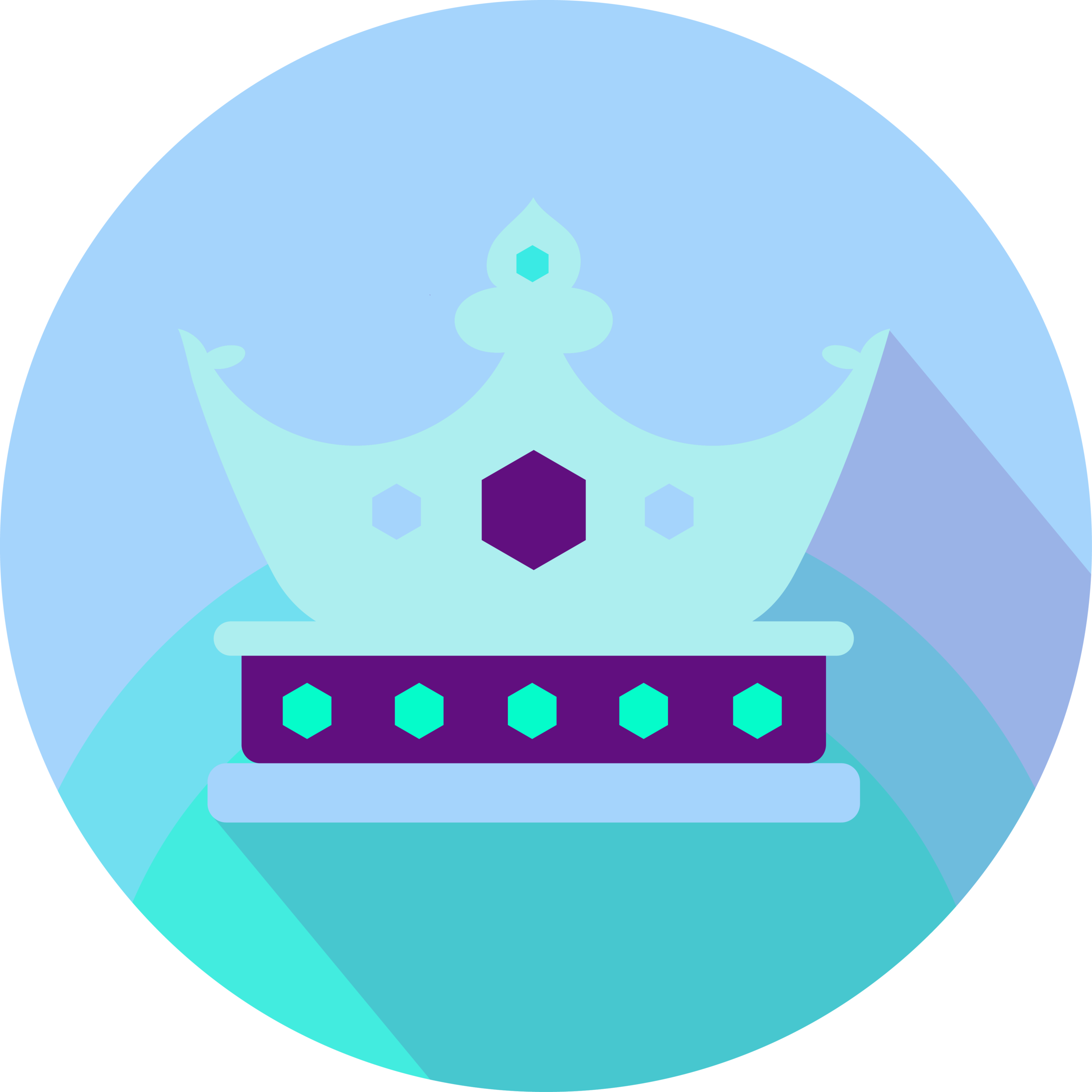 Royalty Icon Transparent.png