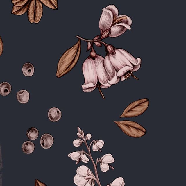 [Scarf detail] Tyttebærblomst, klit-vintergrøn og revlingebær er noget af den flora, du kan finde på mit TVERSTED silketørklæde. 🌱 Der kommer foreløbig tre farvekombinationer - har kan du se den mørke. Der kommer flere billeder de næste dage, så kig forbi og fortæl, hvilken, der er din favorit :) ❣️ Det bliver i første omgang en meget LIMITED edition ♻️🌈🦄 Så hvis du er interesseret, så må du endelig give lyd! Det nemmeste er, hvis du skriver dig op på min liste på www.annelovenskjold.com (link i bio). Så får du automatisk besked, når de bliver sat til salg på siden. Ventelisten har førsteret (men selvfølgelig ingen købstvang 💚). Du er også velkommen til at maile eller sende pm ✍️🌱🙏 . . 🇬🇧🇺🇲 . .  I made this sand dune themed scarf in three colorways. I'll show you the different ones in the coming days. Let me know which one is your favorite. I'll be taking pre-orders, and if you think you might want to get a scarf for yourself or someone special, please head over to my website and subscribe to the list! I won't be making millions of these 😊🌈♻️ So it's a very limited collection for now. Waitlist members get a head start. 🙏 . . . .  #klimatosse #wildflowers #vildnatur #dknatur #dansknatur #natureconservation #naturbeskyttelse #VisitNordjylland #natureinspiresme #naturewalks #botanicalillustration #wherethewildflowersgrow #beautiundermynose #bæredygtigmode #bæredygtiggarderobe #sustainablewardrobe #sustainableliving #conciousconsumer #hållbartmode #silkscarf #silketørklæde #aquietstyle #ihavethisthingwithflowers #underthefloralspell #hverdagsluksus #fairfashion #fairfashionootd #fashionchangers #fairfashionista #letschangethatfashiongame