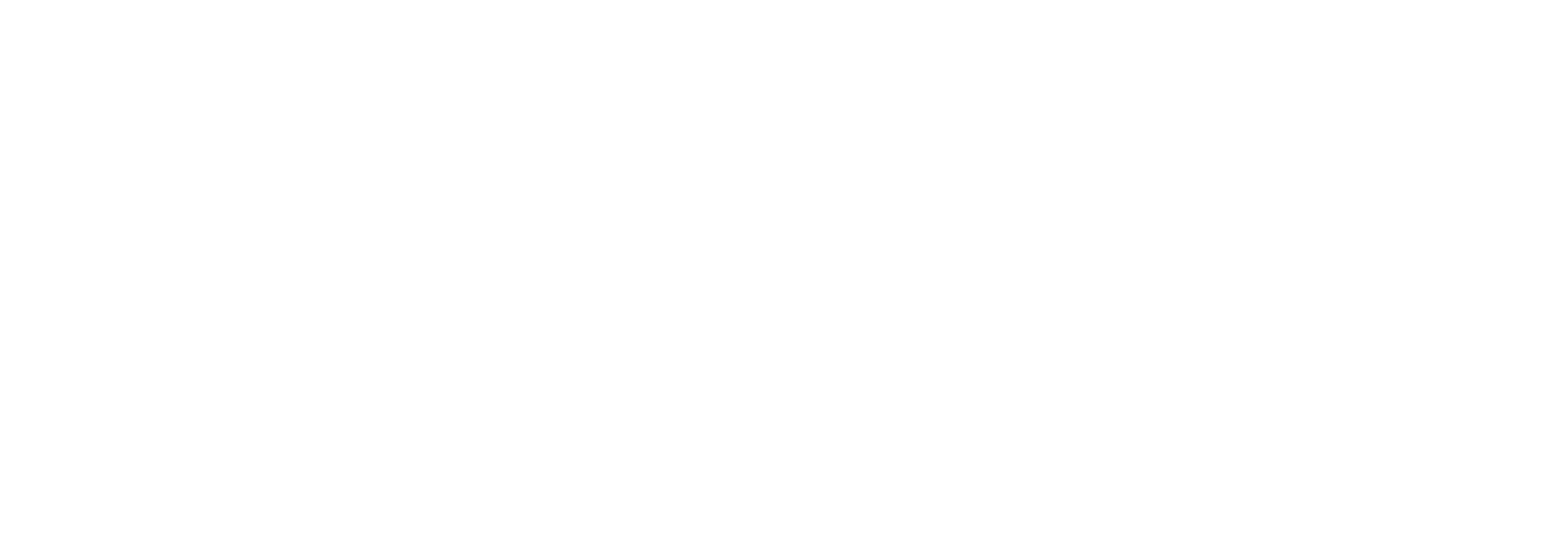 Bragi logo_white.png