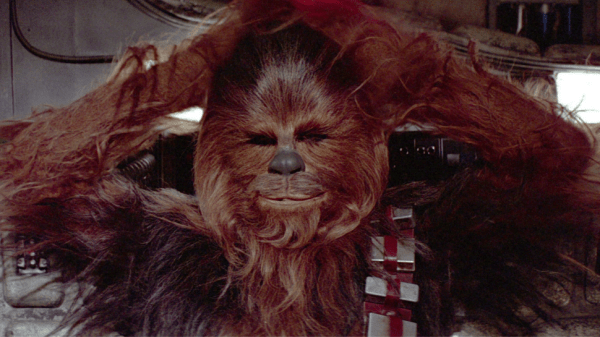 """""""Let the Wookie win."""" - Chose your battles wisely."""
