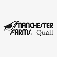 Copy of Manchester Quail