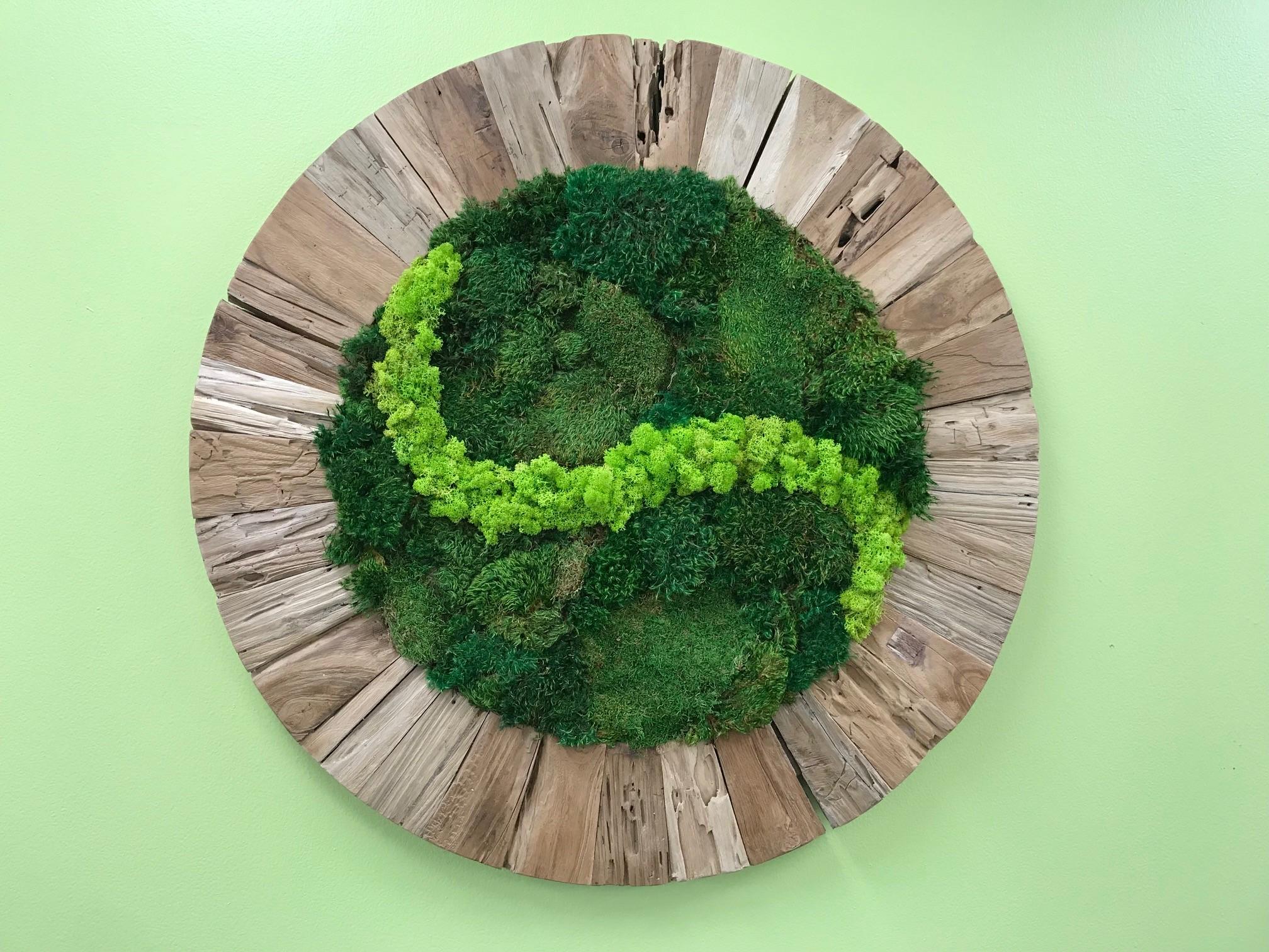 Moss wall in beech frame.jpg