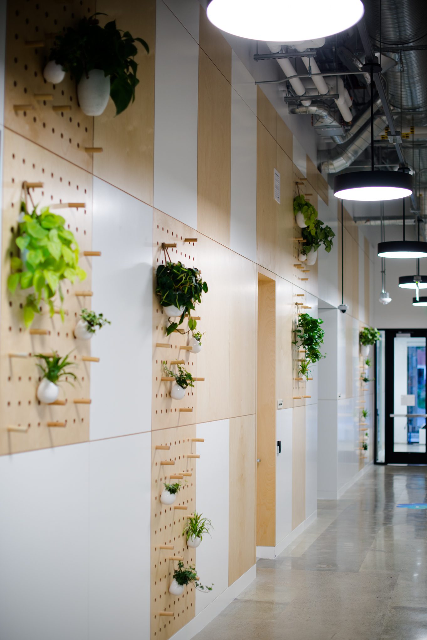AddLife-Wall-Installations-019.jpg