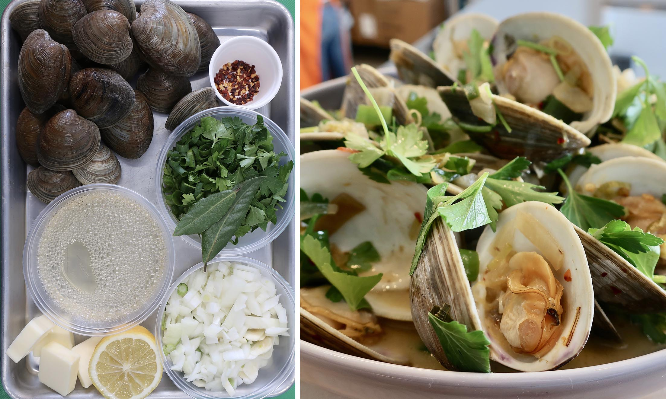 STEAMED CLAMS -