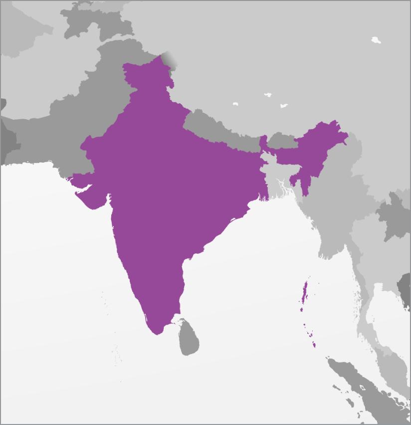 <strong>79% Hindu</strong><p></p>
