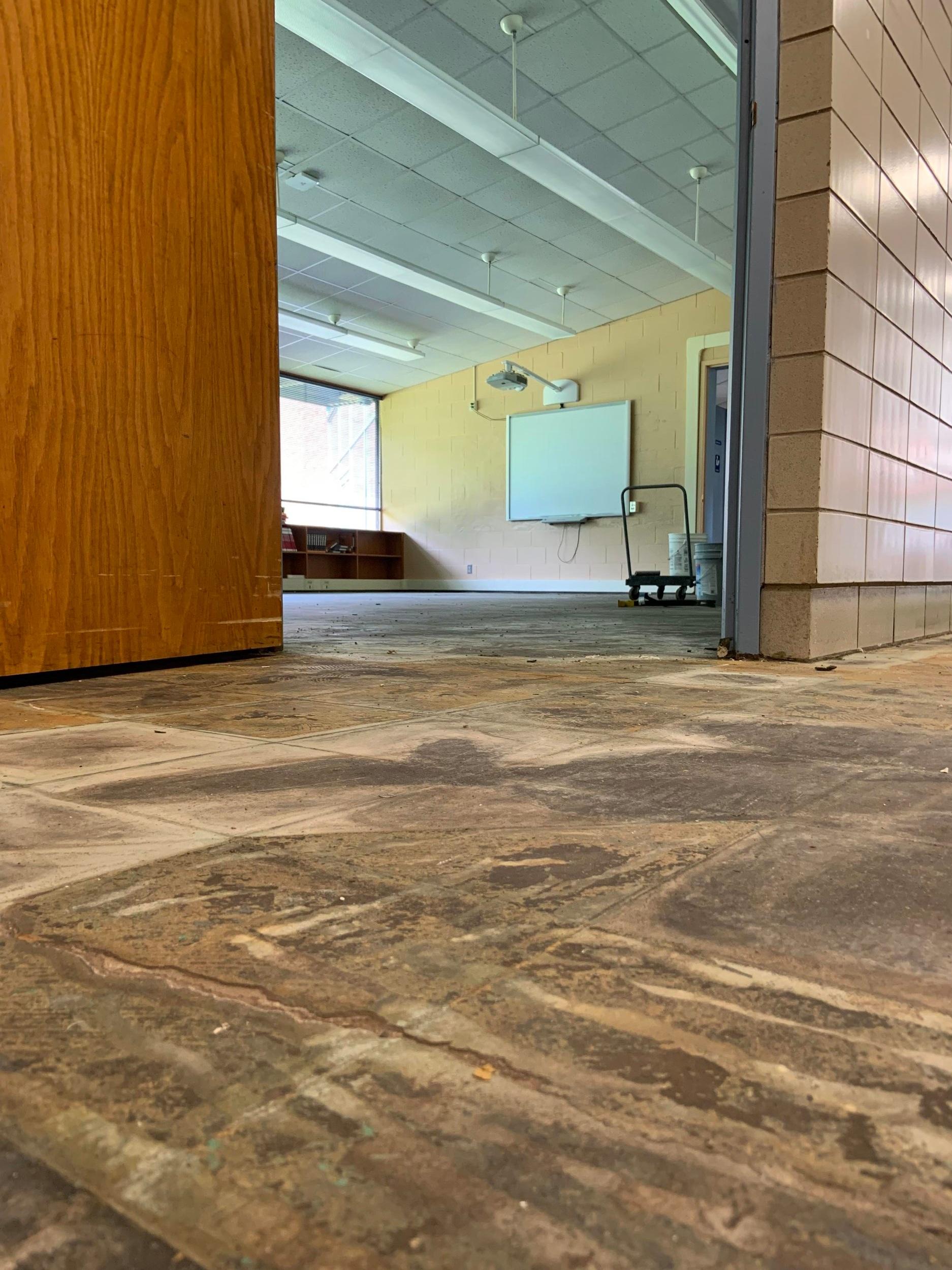 french+room+floor.jpg