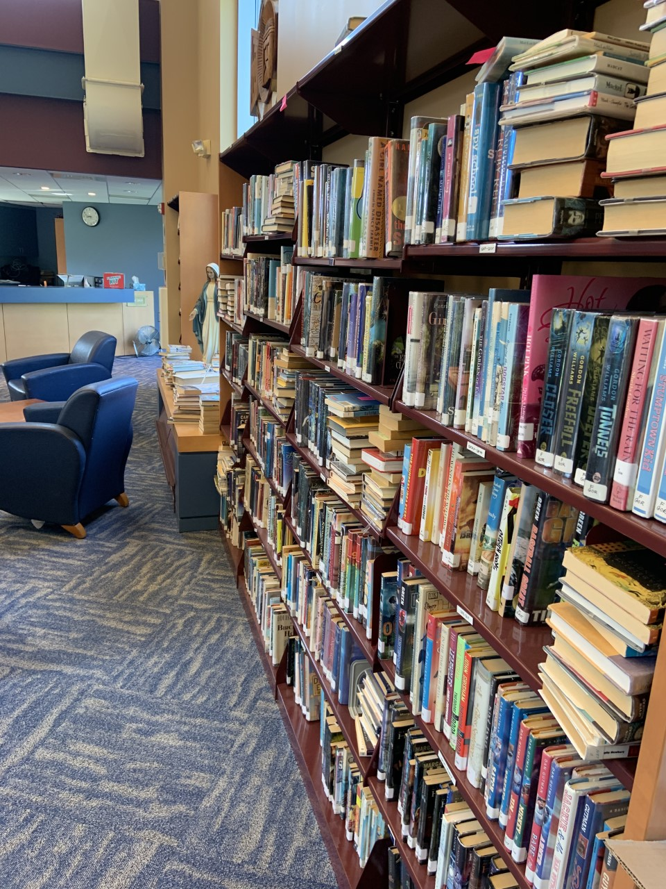 library with rugs1.jpg