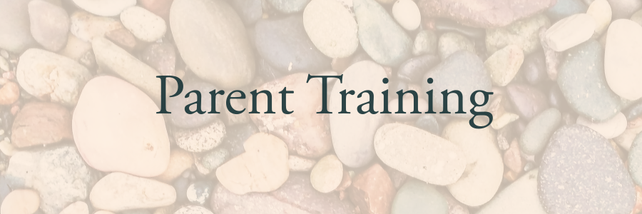 - I offer training for parents living with a wide range of challenges that arise in working with children with autism and other developmental disabilities. LEARN MORE