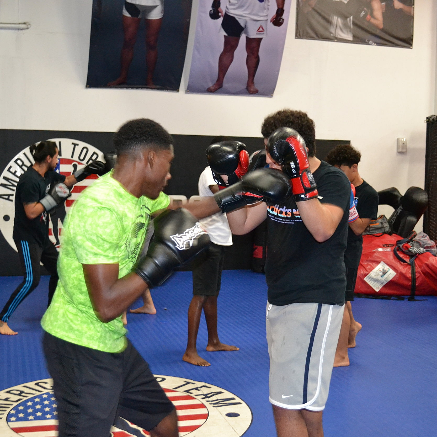 Boxing/Striking