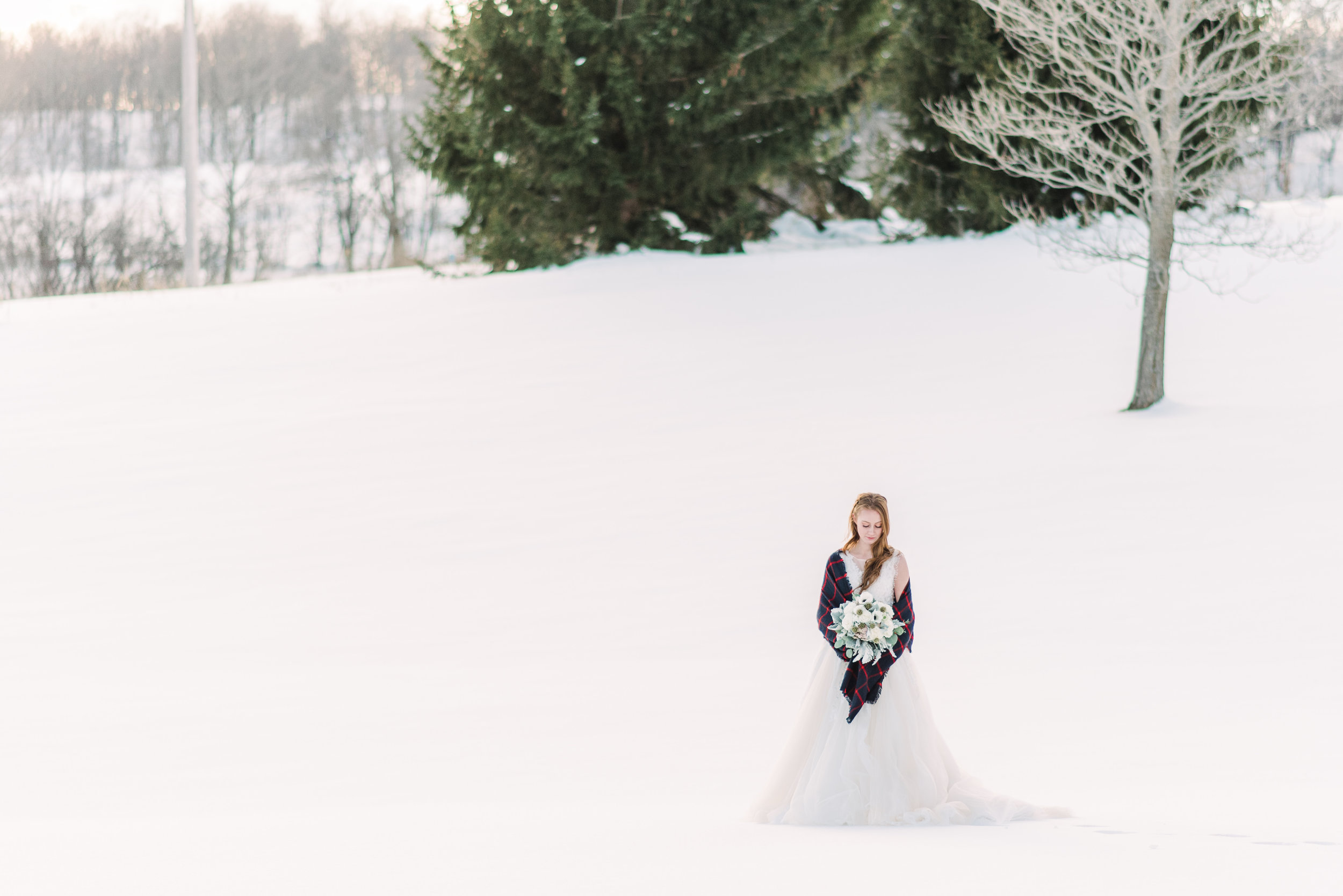 unique wedding photography winter scenery wedding photo winter bouquet simple clean wedding dress under $1000