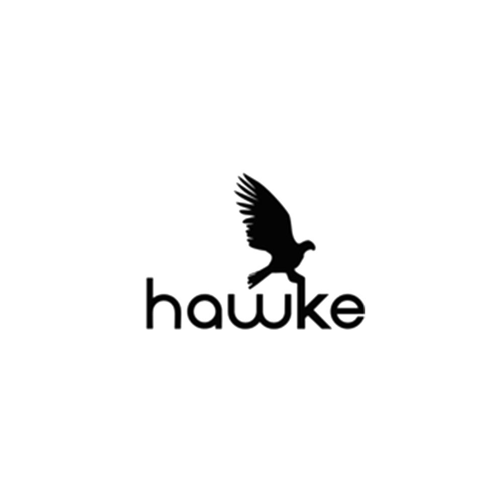 hawke.jpg