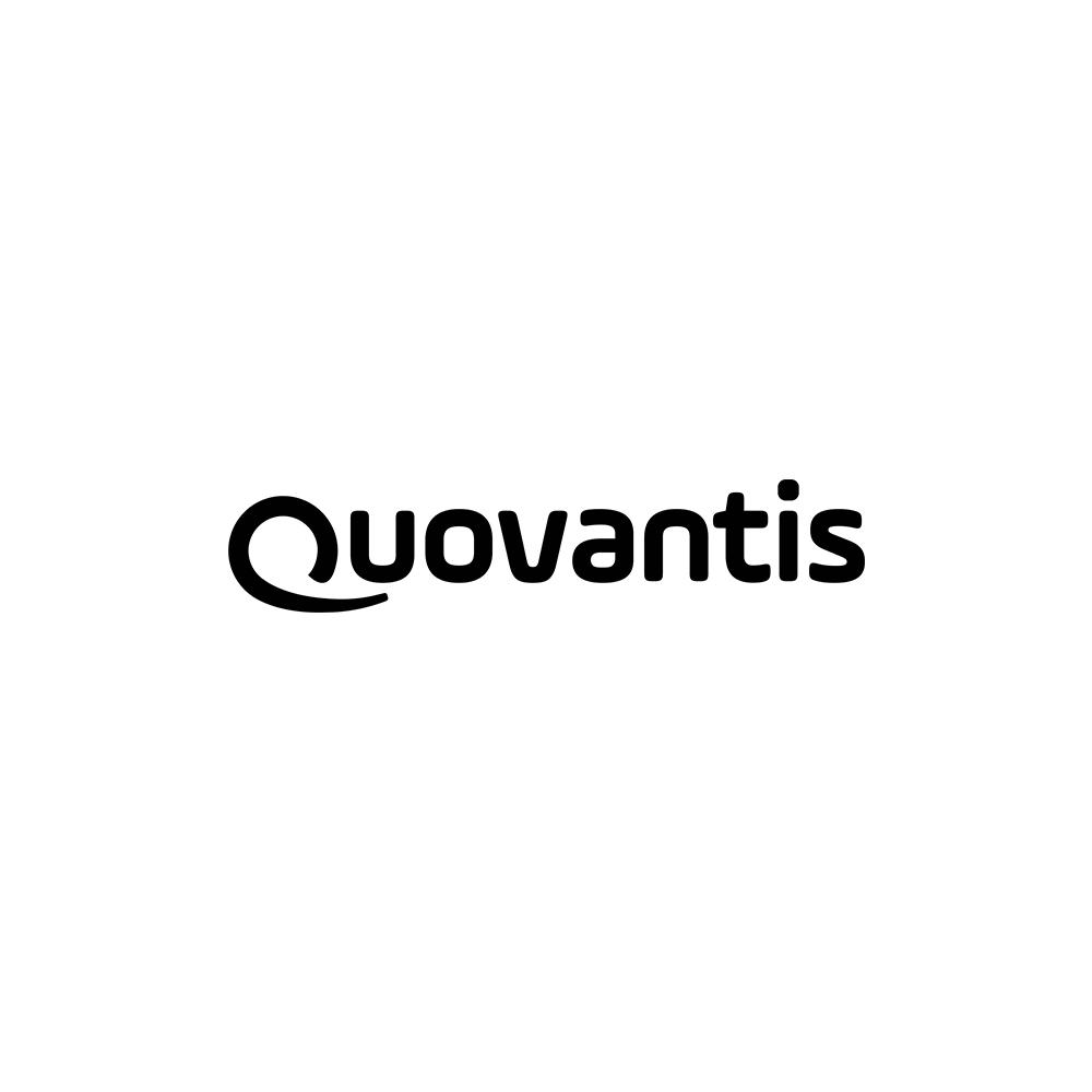Quovantis.jpg