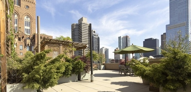 5F-rooftop.jpg
