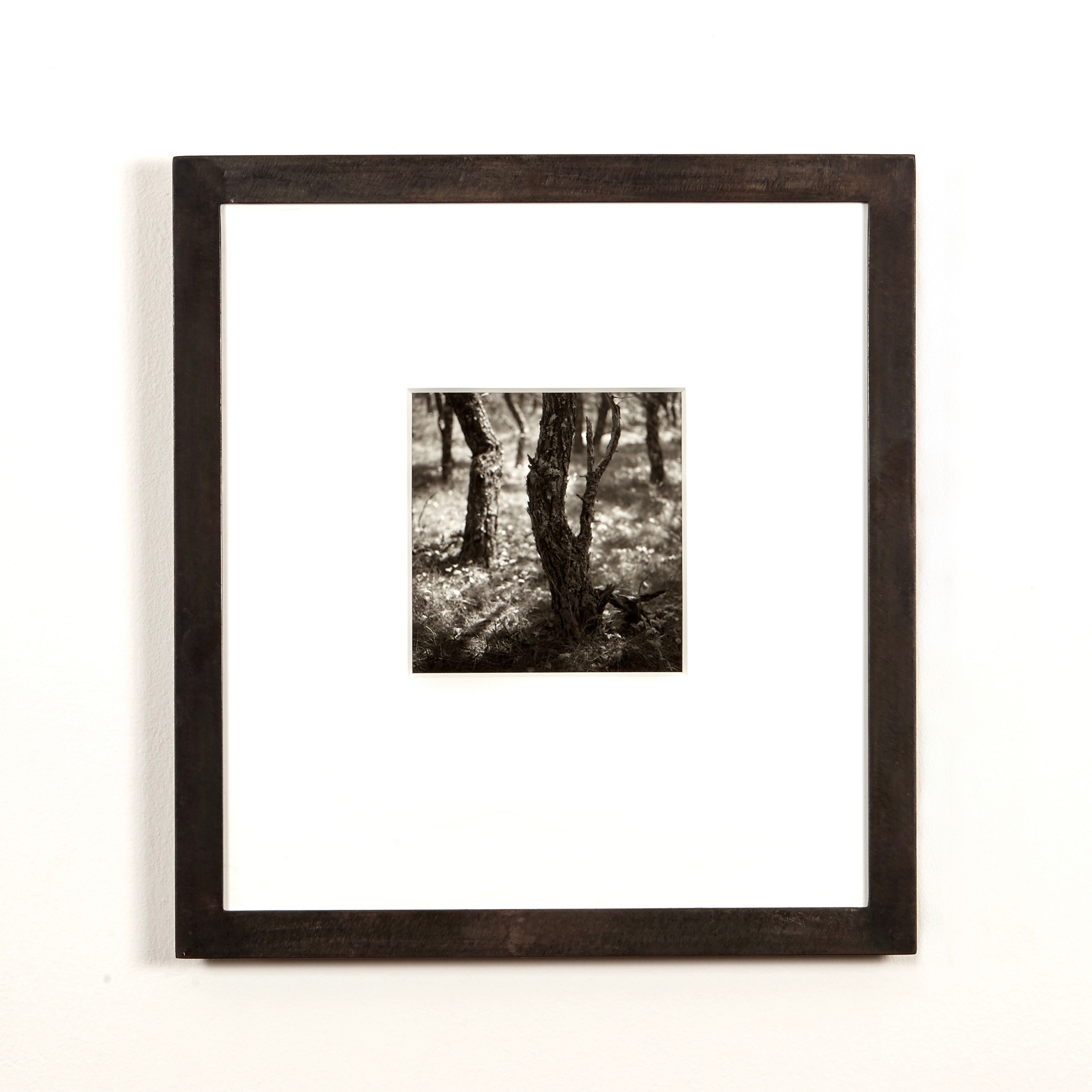 Eric Lindbloom silver gelatin photograph in welded steel frame