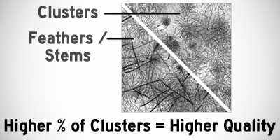 The cluster to feather ratio -