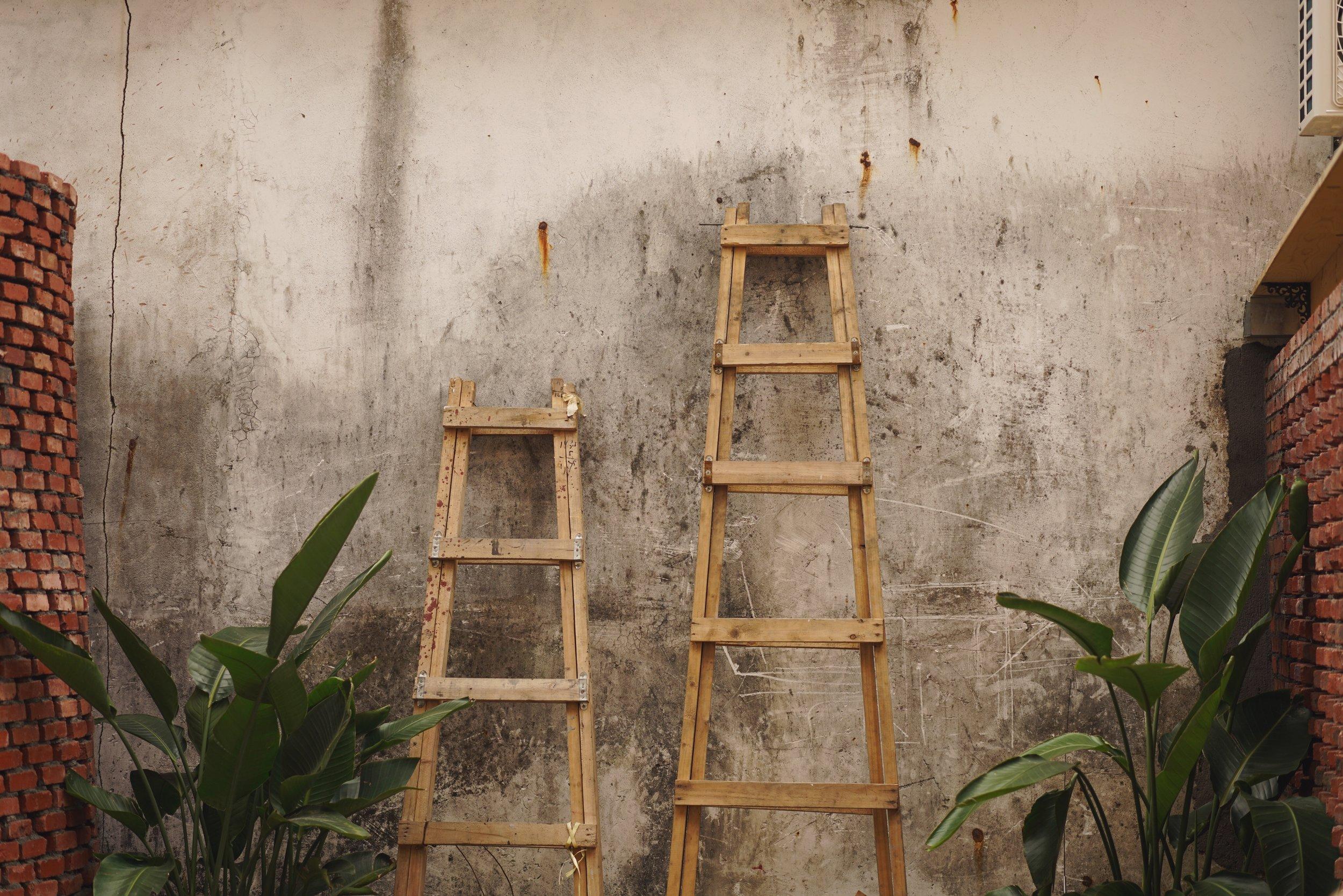 The Fear Ladder technique.jpg