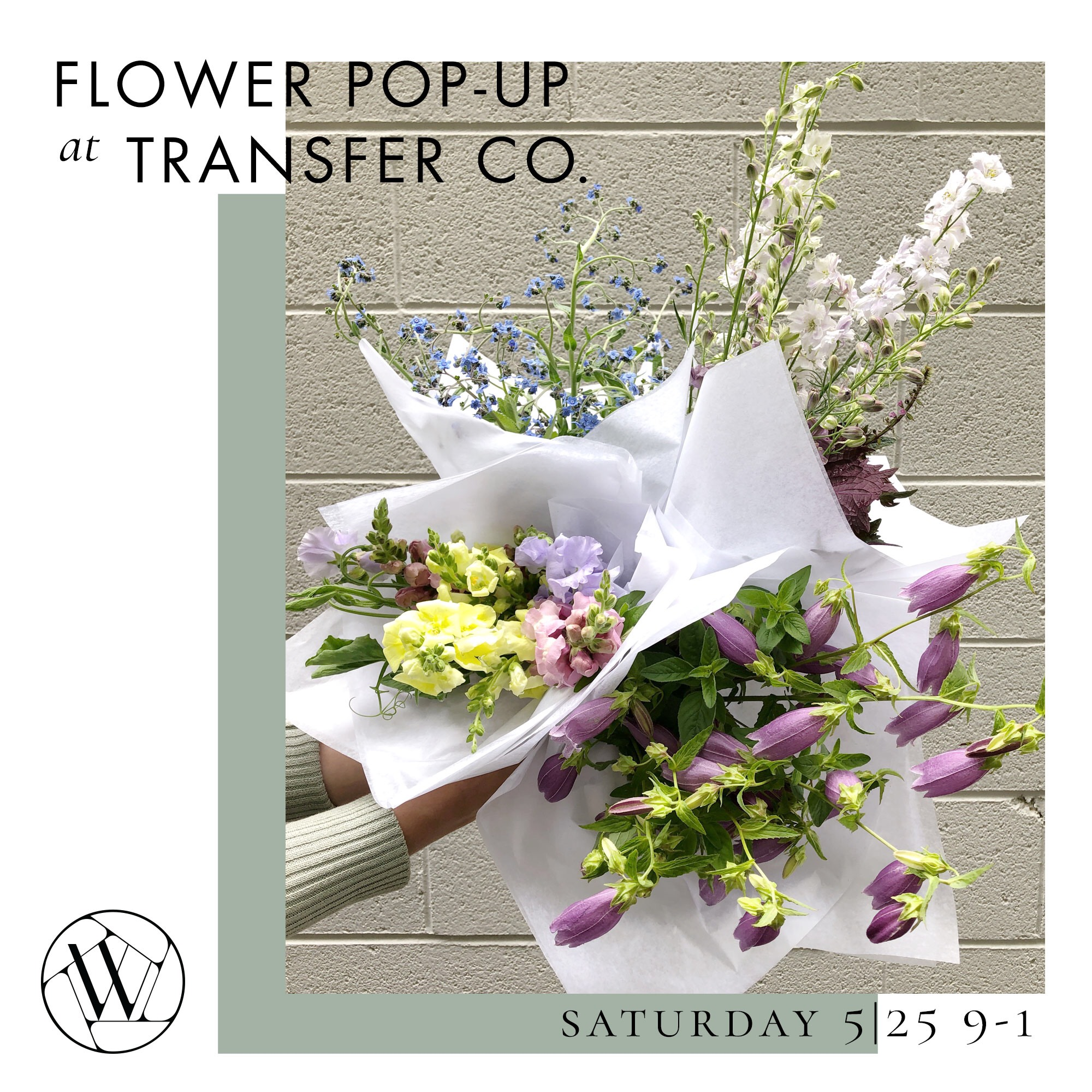 Wylde-TransferCo-Late-May-popup.jpg