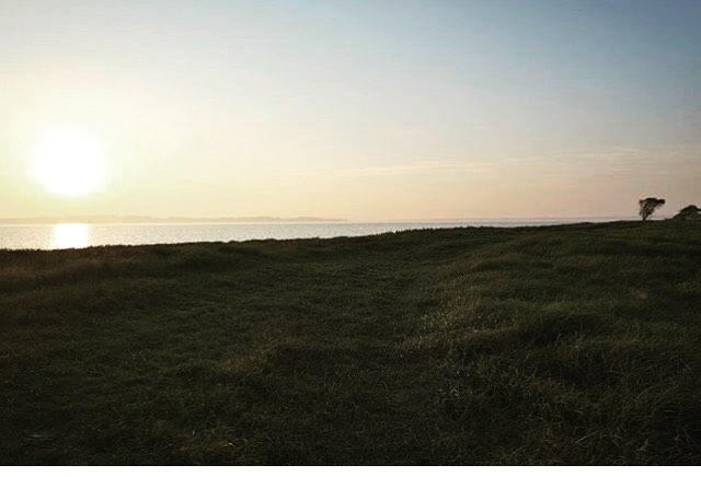 Udsigten fra Brandsø en solrig efterårsdag🏝🌞Repost fra @martinsolystphotography #ubebeboetø #forladt #brandsø #lillebælt #smukudsigt #smukdag #elskerdetdanskeøhav