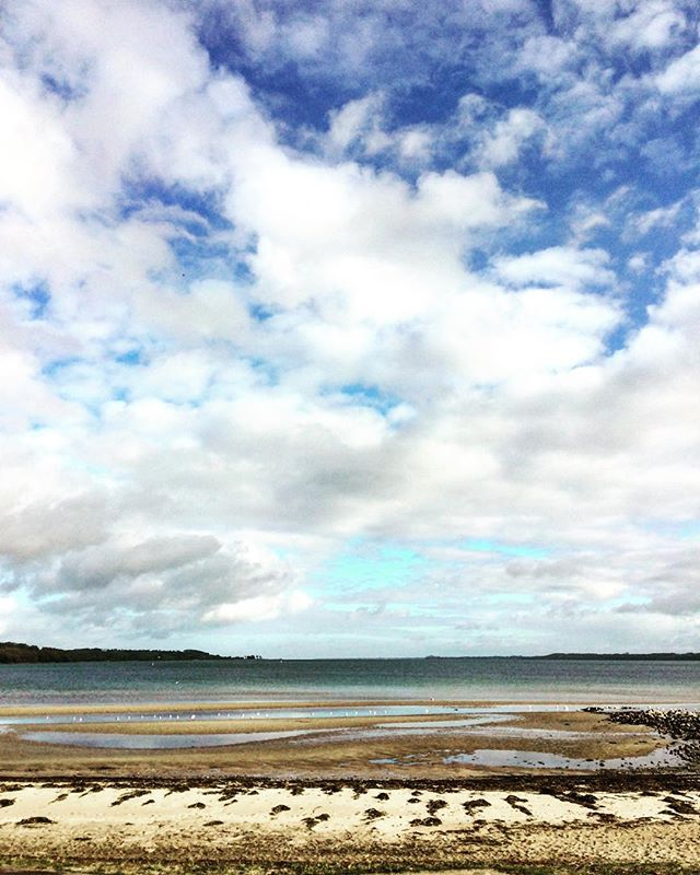 Har holdt foredrag om forladte danske øer til den her udsigt i dag🏝#ubeboetø #forladt #foredrag #højskolenøstersøen #aabenraa #hyggeligtsted #sødekursister #sikkeenudsigt
