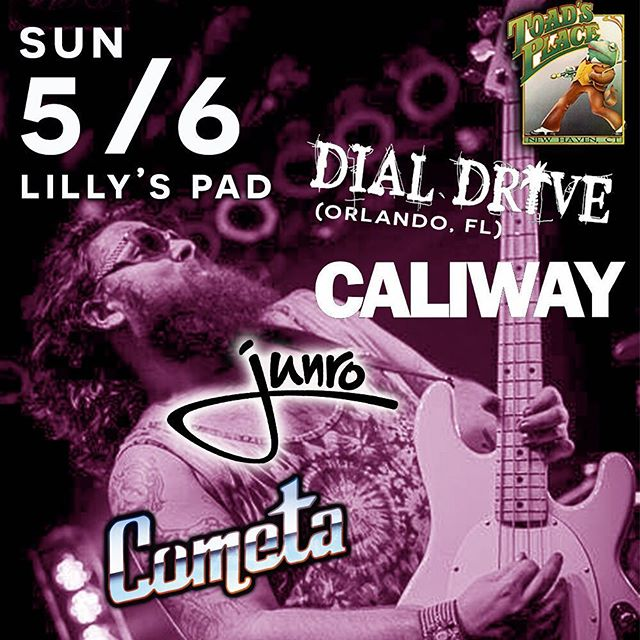 Some sick music comin ur way CT! 🎸🎶🔥 .  #Orlando, FL's own @dial_drive is rockin @toadsplace (Lilly's Pad)🌴🐸 . w/ @caliwayband & @junroband . . . . . . . . . #poppunk #ctmusic #bands #bassguitar #beard #newmusic #NewHaven #punk #ska #musicians