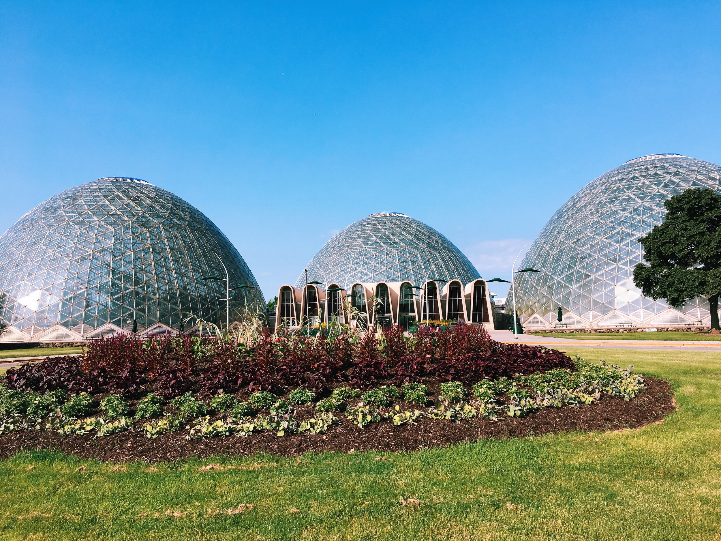 Mitchell Park Domes- Photography by Pryscilla Balladares