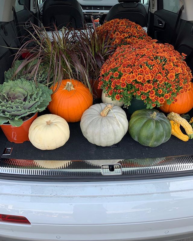 Autumn decorations 🍁🍁🍁 #seasonal decor #falltime
