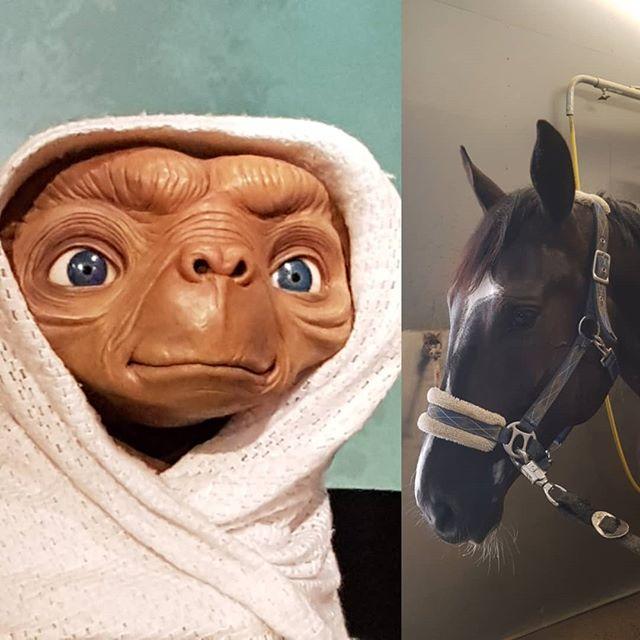 ET and ET 🤩