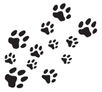 paw prints - Copy (2).jpg