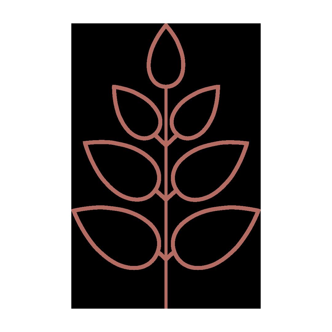 emily-Logo-colir-12.png