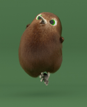 Kori the Kiwi, from our presentation title slide