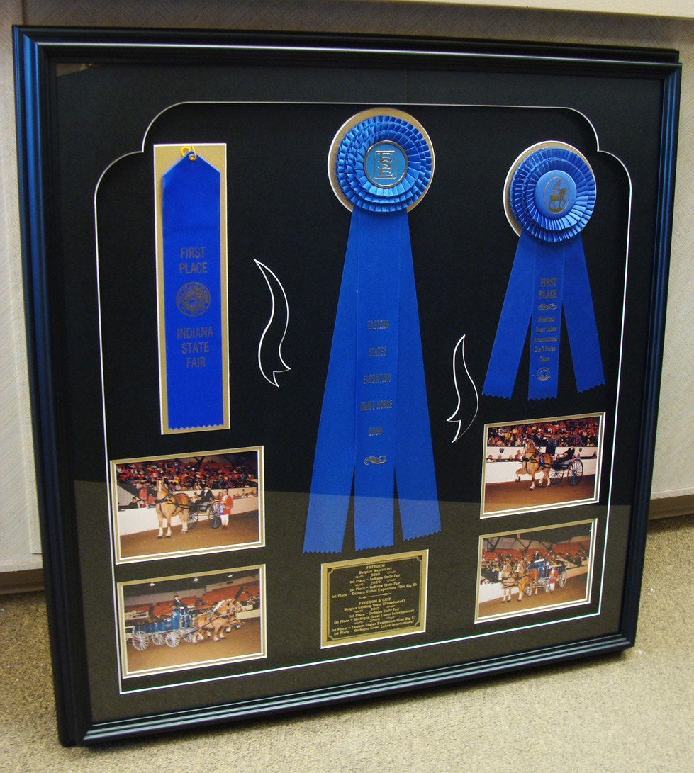framed-ribbons-award-service-windsor-ontario-picture-this-framing.jpg
